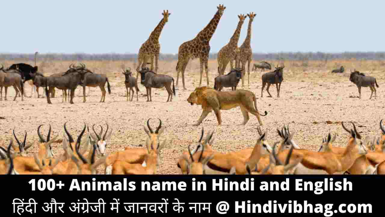 List of animal names in hindi